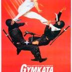 Gymkata 1985